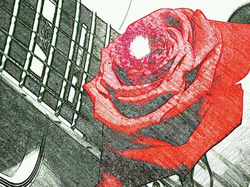 MANNI O. - Liebeslieder zum Valentinstag
